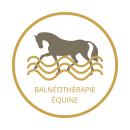 Balnéothérapie équine du Haras de Malleret