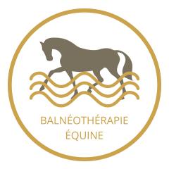 Balnéothérapie équine de Malleret